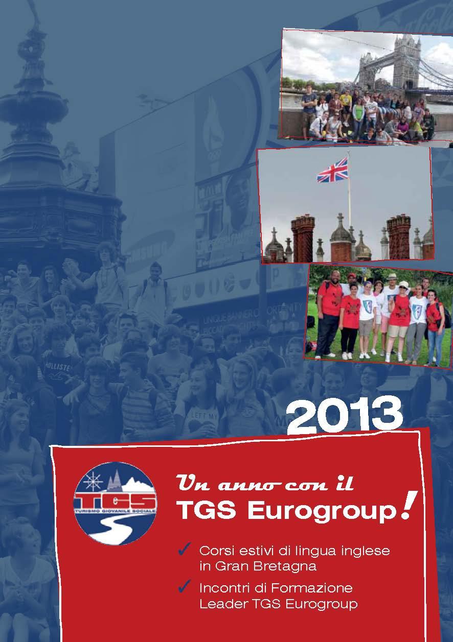 TGS_2013_Flyer