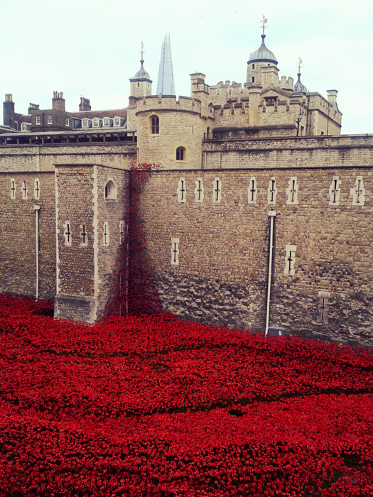 Tower_of_London_remembers_1914-2014__07